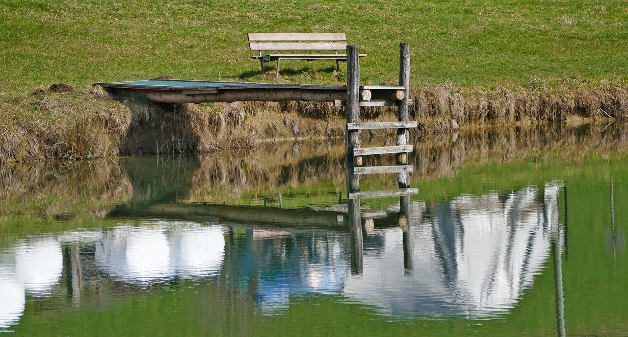 paisaje, la naturaleza, estanque