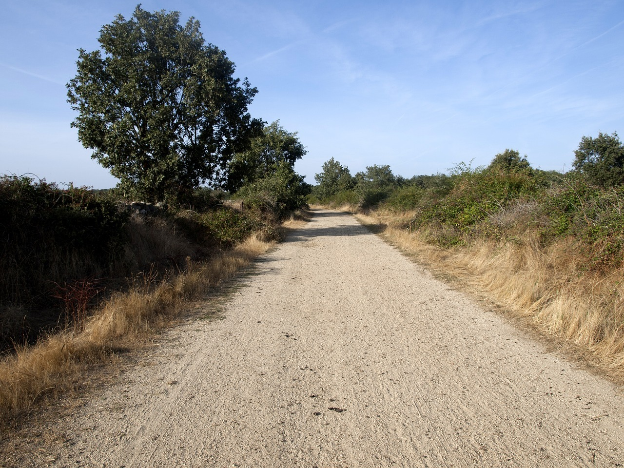 camino, tierra, campo