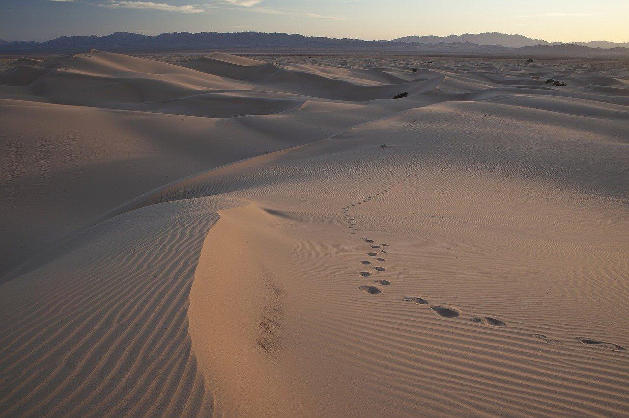 dunas de arena, desierto, paisaje